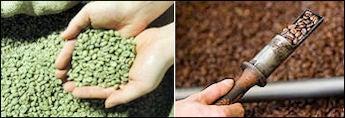 コーヒー豆と焙煎
