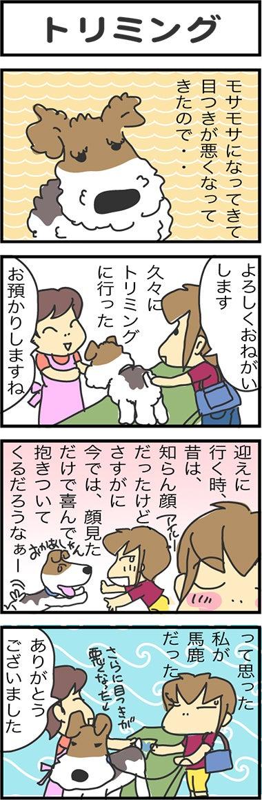 illust789