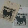 かこさんTシャツ〜(…