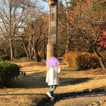 日本三大庭園、偕楽園…