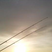 週4釣行~♪