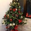 クリスマス♥