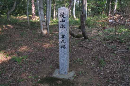 【写8】焼山城