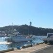 片瀬漁港でのいちにち