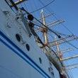 再び帆船「海王丸」へ…