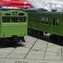 丸い緑の・・・