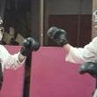 日本拳法練習中♪