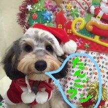 ☆クリスマスに英単語…