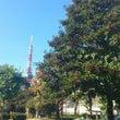晴れた空と東京タワー