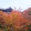 京都兄妹旅行⑥ 東福…