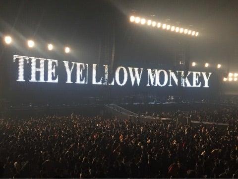 イエロー モンキー 東京 ドーム