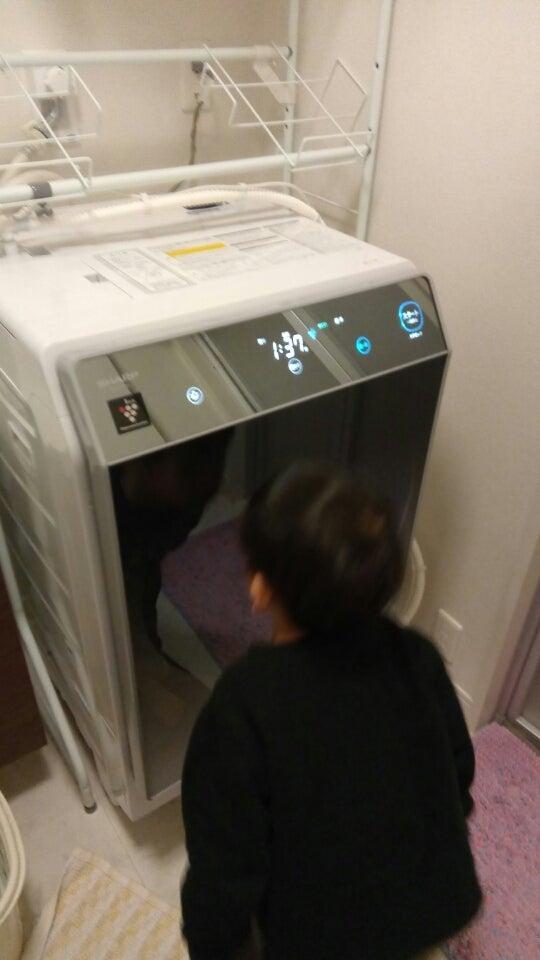 シャープ ドラム 式 洗濯 機