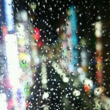 雨の新宿歌舞伎町