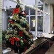 クリスマスツリーを飾…