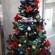 【ご紹介】クリスマス…