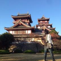 城を観る《伏見城(桃…