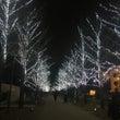 冬ソナストリート♪