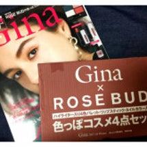 【雑誌付録】Gina…