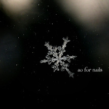 雪の結晶で冬限定❄ネ…