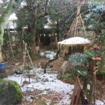 冬も本番ですね