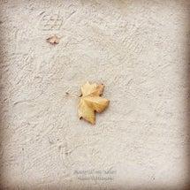 足跡と落ち葉