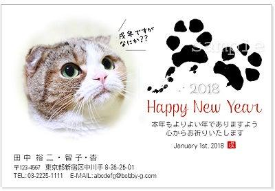 ペット写真で年賀状・猫