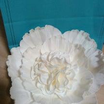 ☆ Francfra…