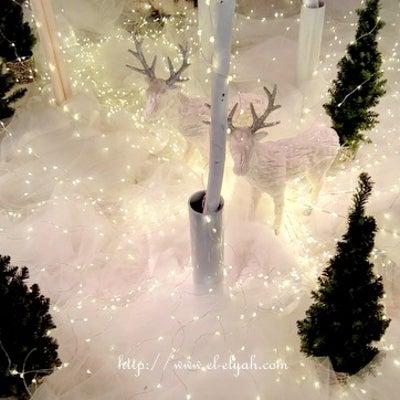 〚R様が本日体験された光〛天恵の神光♡シルバー光線のエロヒム『グレース』の記事に添付されている画像