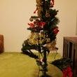 クリスマスシーズンp…