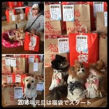 ラリカンの1万円福袋…