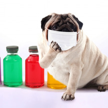 風邪予防対策シリーズ…