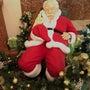 サンタさんが寝てる(…