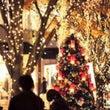 クリスマス前に綺麗な…