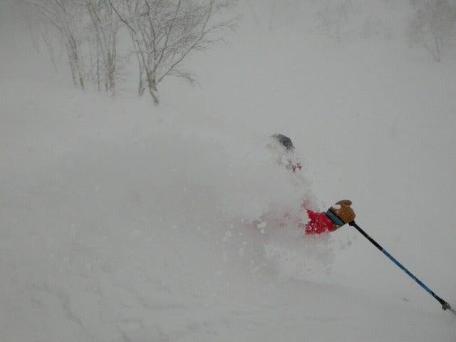 スキー SKI 深雪新雪 パウダース...