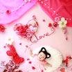 【募集中】1/26(金)バレンタイン撮影会@西船橋親子カフェヘッジホッグザレインボー