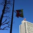 きょうの国旗【ミャン…