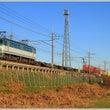 武蔵野線の貨物列車