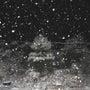 雪の降る夜に・・・