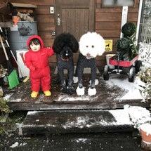 みんなで雪遊び♪