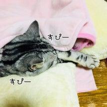 まくら寝しながら、お…