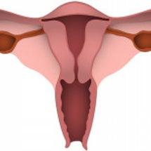 片側の卵管で妊娠