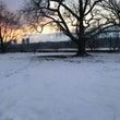 冬の公園は美しい!で…