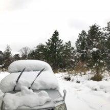 今冬初の15センチ。