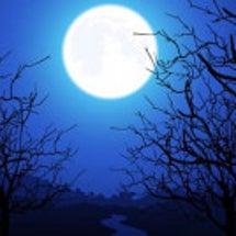 月に導かれ神社に集ま…