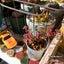 ムーミン多肉&コンパクトサイズのアガベ(*´罒`*)♪