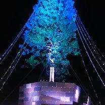 【神戸】にこいち「翌檜」の歌 & 世界一高いツリー第2の人生の記事に添付されている画像