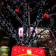 夜[東·報告] 渋谷…