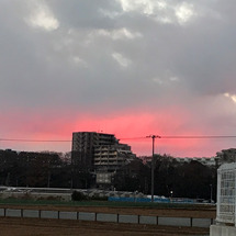昨日の空。