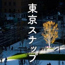 【写真】東京スナップ