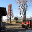 12月の並木町公園